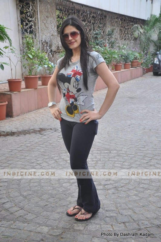 Zarine Khan at Akshay Kumar's Housefull 2 success party