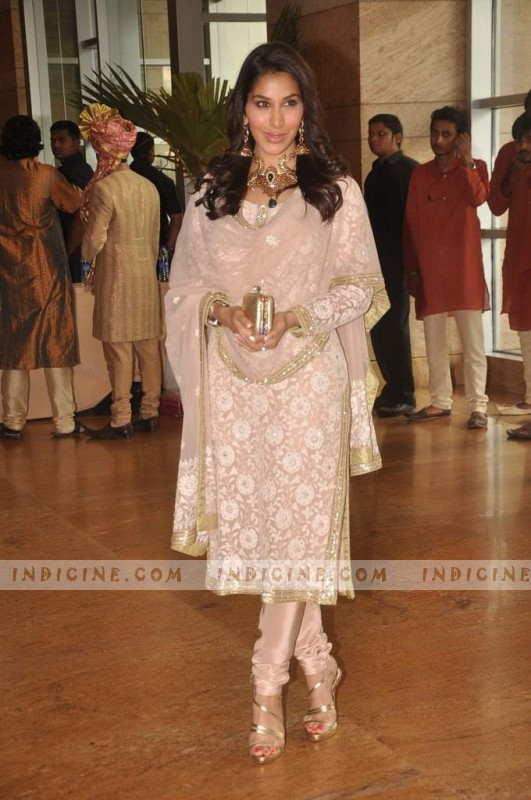 Sophie Chaudhary at Ritesh and Genelia's wedding