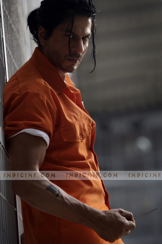 SRK in Don 2