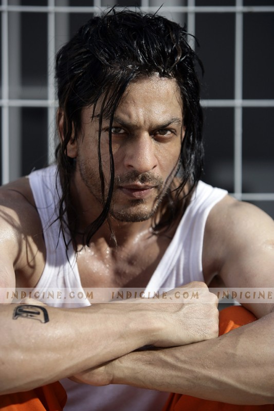Shahrukh in Don 2