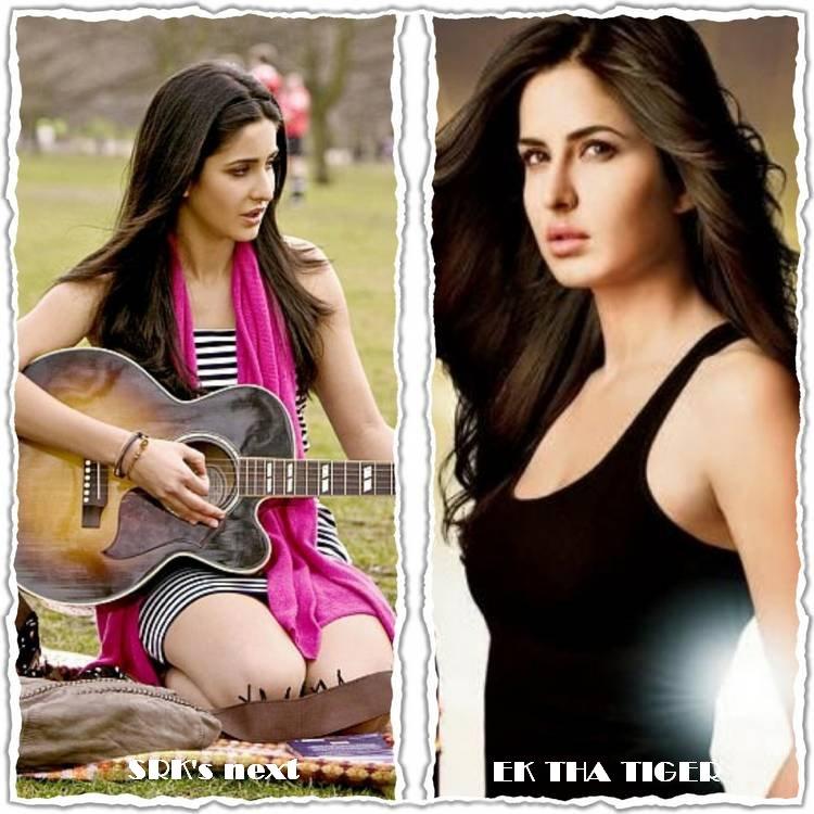 http://www.indicine.com/img/2012/06/Katrina-in-Ek-Tha-Tiger-or-SRK-film.jpg