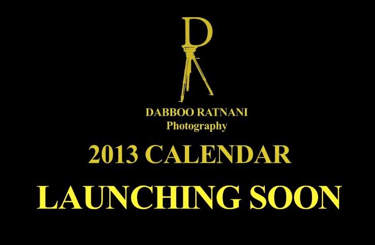 Dabboo Ratnani 2013 Calendar