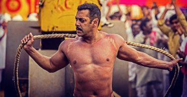 Salman Khan's wrestling still from Sultan